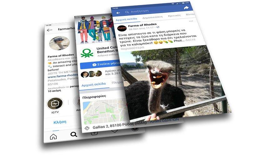 dingo-alilepidrasi-social-media-2